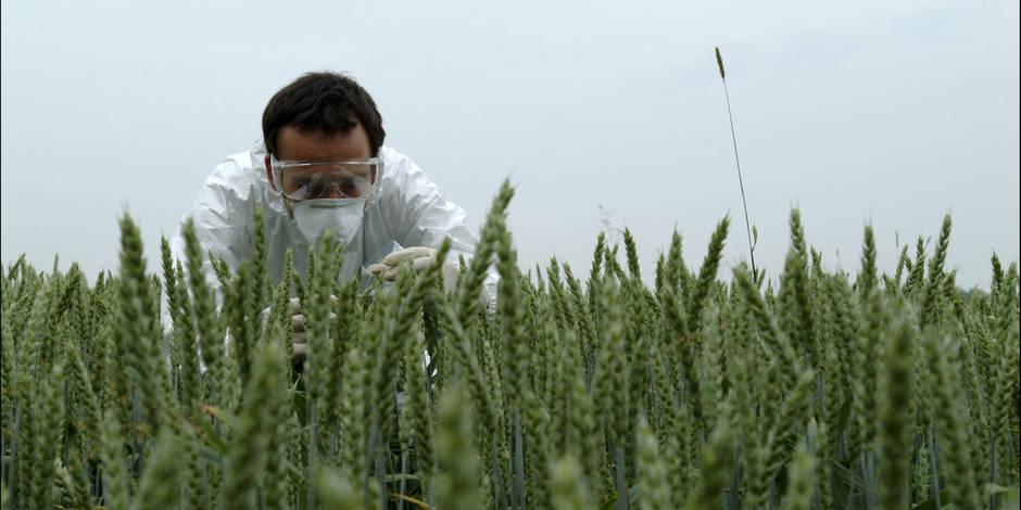 OGM: un Belge lauréat du Prix Mondial de l'Alimentation