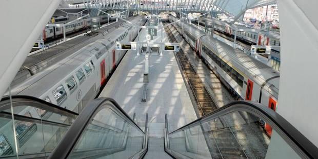 L'Olivier wallon n'arrive pas à donner ses priorités ferroviaires au fédéral - La Libre