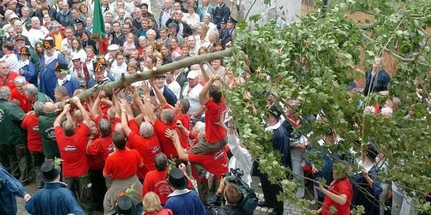 705e Meyboom: l'arbre de la joie planté en un seul coup à Bruxelles - La Libre