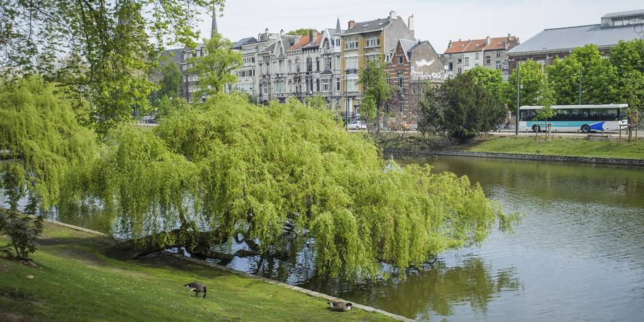 Les maisons les plus chères à Ixelles, les moins chères à Quaregnon