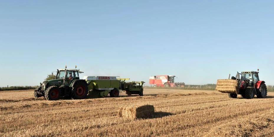 """Di Antonio: """"Le pouvoir de pression des agriculteurs est malsain"""""""