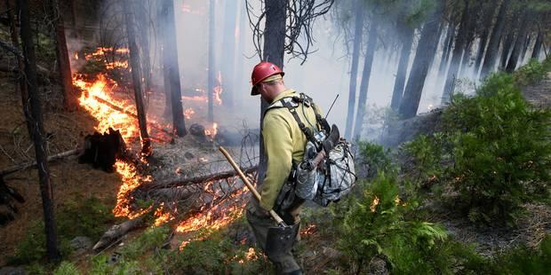 L'incendie près du parc de Yosemite continue de s'étendre - La Libre
