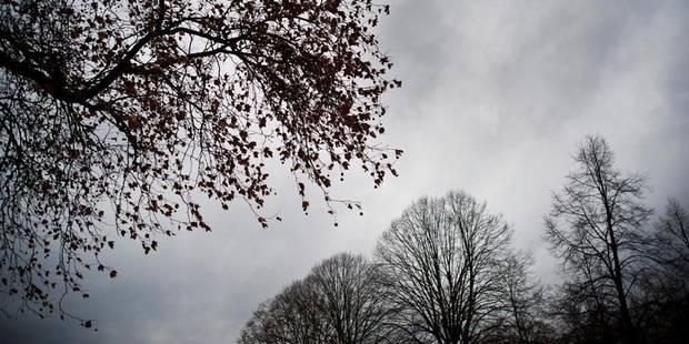 Pas trop de neige pour les prochains jours - La Libre