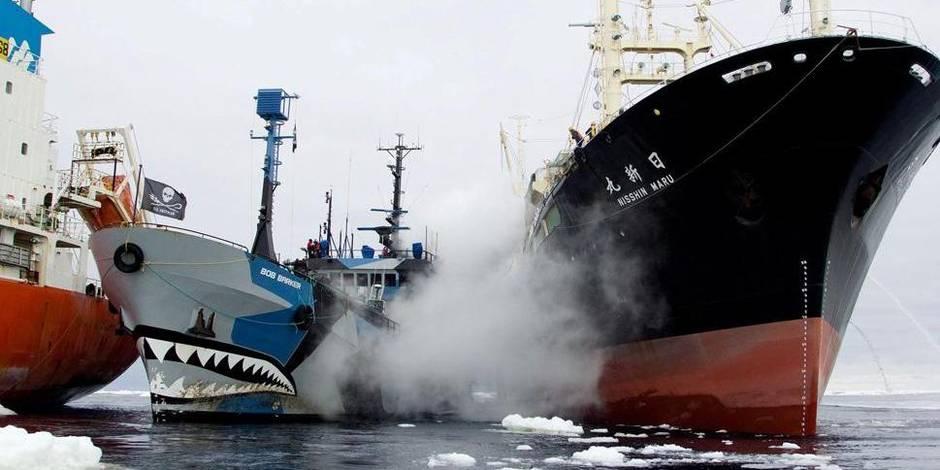 Les pirates de l'écologie repartent à l'abordage