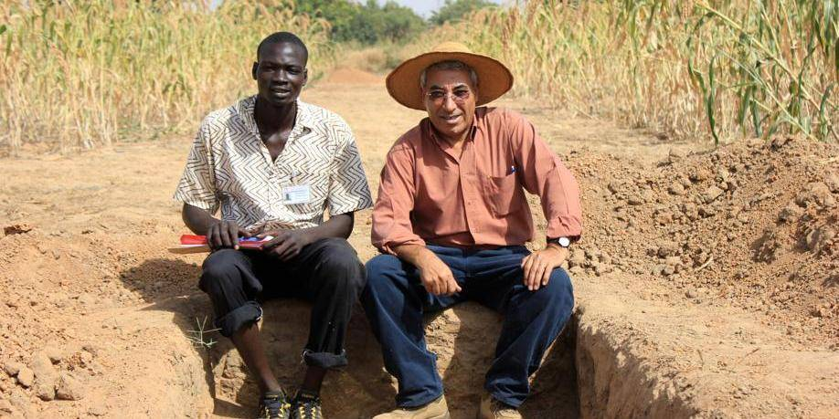 Et si l'agroécologie revitalisait la terre morte?