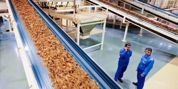 Philip Morris veut fermer son usine aux Pays-Bas - La Libre