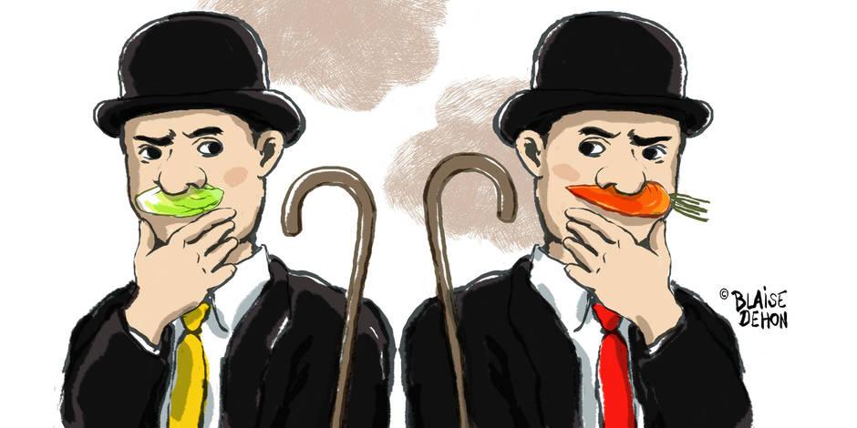 Flamands et Wallons votent différemment mais pensent la même chose