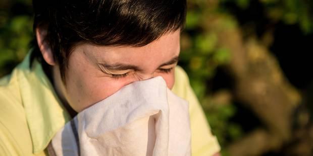 Rhume des foins: le seuil de sensibilité largement dépassé - La Libre