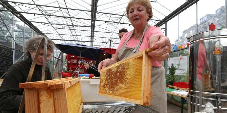 Tour et Taxis produit son premier miel
