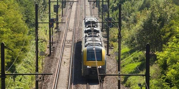 Train bloqué entre Schaerbeek et Vilvorde: le conducteur n'aurait pas respecté la signalisation - La Libre