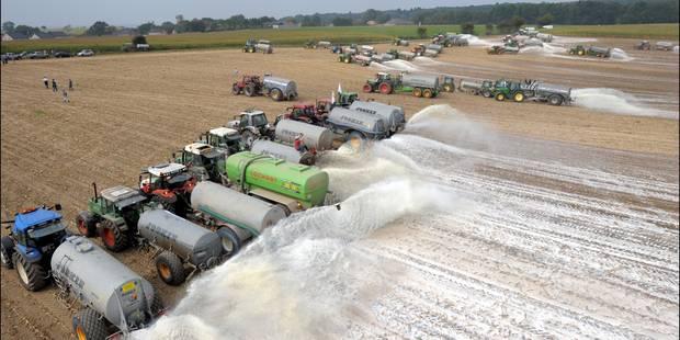 La Wallonie prête à soutenir ses producteurs laitiers - La Libre