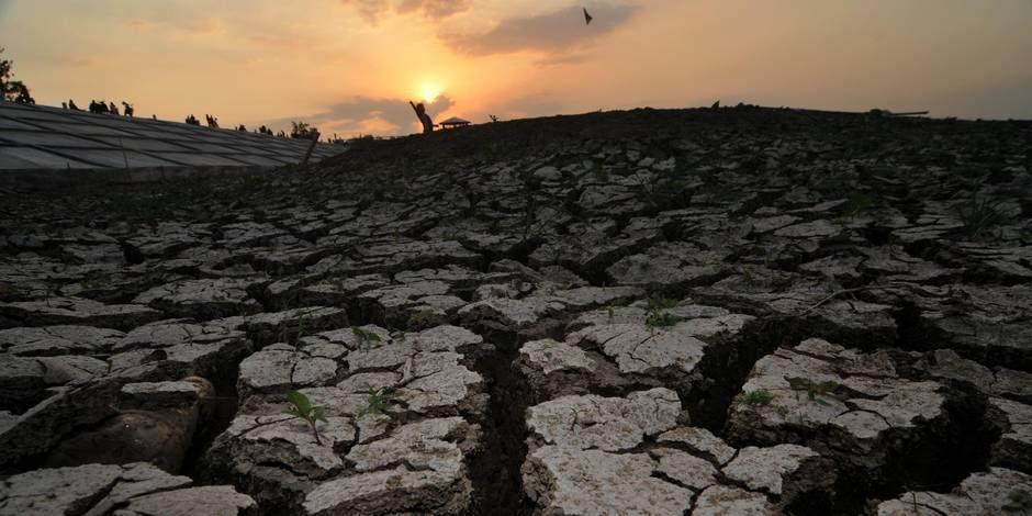 2014 a été l'année la plus chaude jamais enregistrée sur le globe