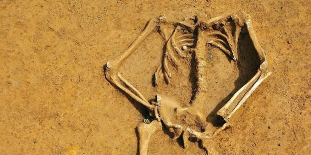 Waterloo : le squelette serait bien allemand - La Libre