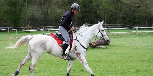 Equitation: un premier sacre pour Bastijns - La Libre