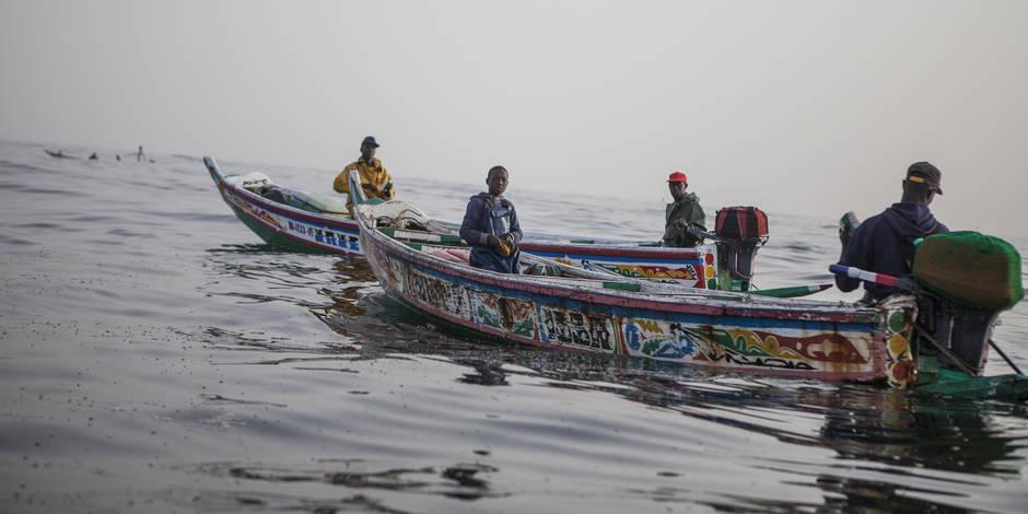 Menace sur la pêche au Sénégal - La Libre