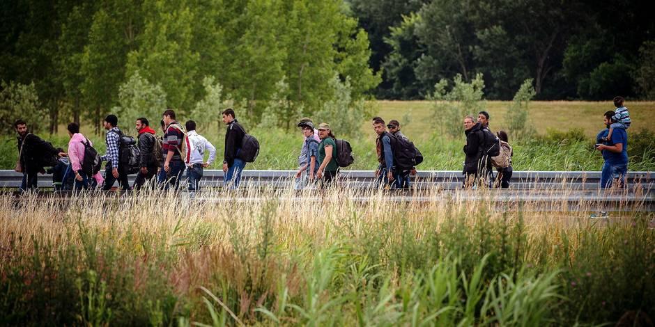 Qui a vu des clandestins en Hongrie ? - La Libre