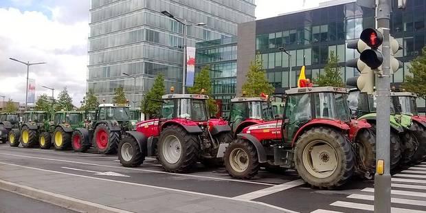 Les aides de l'Europe aux éleveurs seront ponctuelles - La Libre