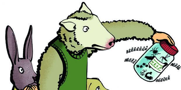 Du malaise dans la bergerie aux chats adultères - La Libre
