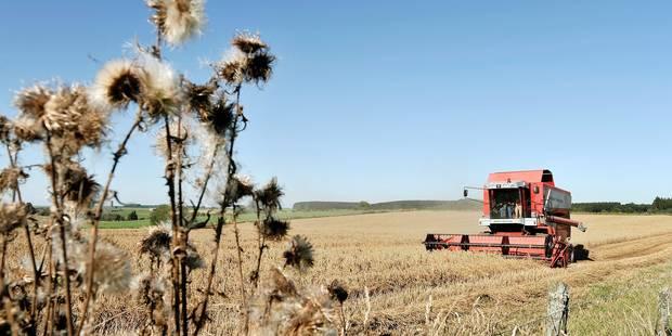 Les Bons Villers: Le caractère rural garanti - La Libre