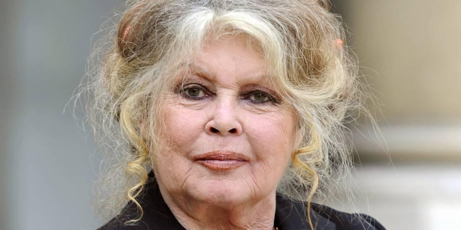 Brigitte Bardot interpelle l'Espagne sur le sort des lévriers