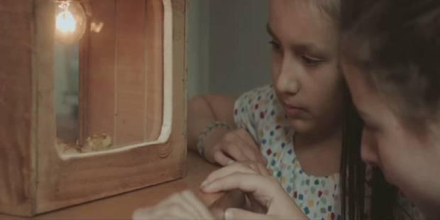 Un film belge primé à Berlin - La Libre