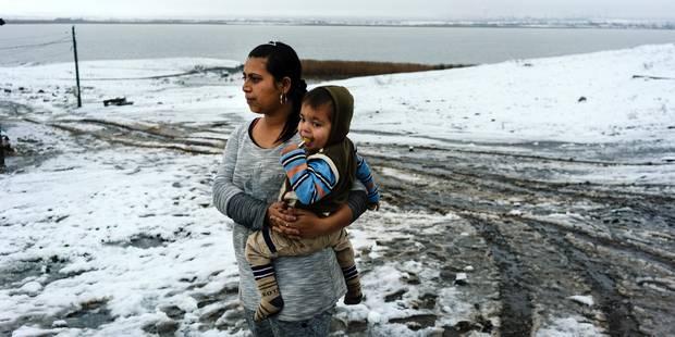 Bébés bulgares à vendre: le commerce de la misère qui rapporte gros - La Libre