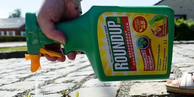 La Région bruxelloise interdit le pesticide Roundup - La Libre