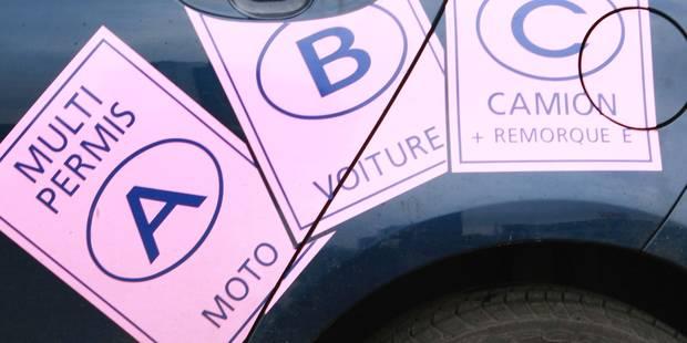 Formation premiers secours obligatoire pour le permis de conduire à Bruxelles - La Libre