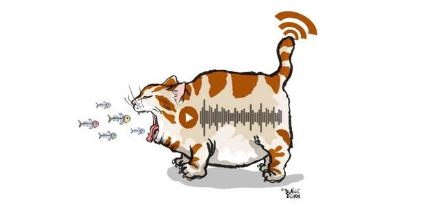 Hold-up sur les ondes de la radio numérique - La Libre
