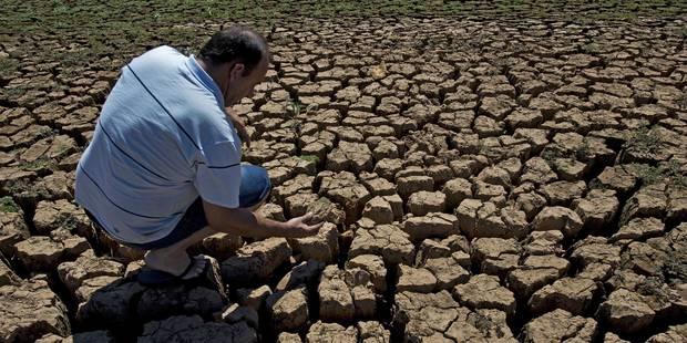 """Les """"conséquences graves"""" des températures records de 2015 - La Libre"""