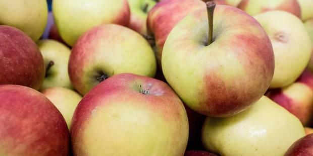 Les pommes belges veulent conquérir le marché indien - La Libre