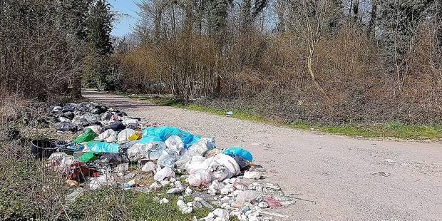 Estinnes: poubelles, rats et gale au Domaine de Pincemaille - La Libre