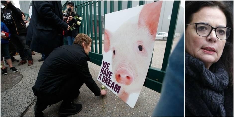 """Etourdissement des animaux: """"Je suis profondément choquée"""", répond Defraigne à la communauté juive"""