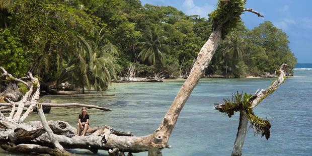 Décès d'Elise Dallemagne en Thaïlande: sept autres décès suspects sur l'île où a été retrouvée la jeune Belge - La Libre