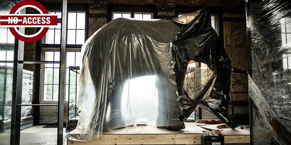 """A Tervueren, fini la poussière, le """"Musée de l'Afrique"""" subit une magnifique et étonnante rénovation - La Libre"""