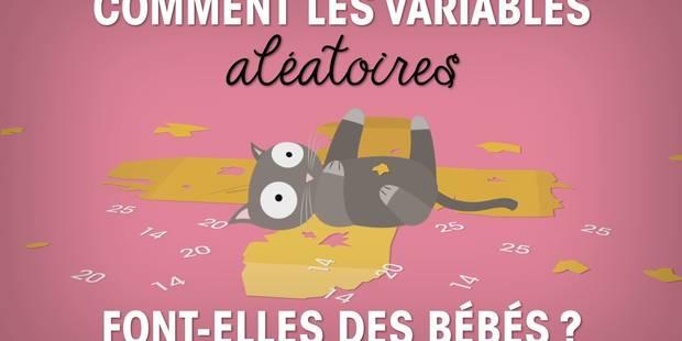 Louvain-la-Neuve: il cartonne sur YouTube en expliquant les stats... à son chat (VIDEO) - La Libre