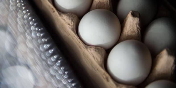 Oeufs contaminés par un insecticide: pas de rappel prévu en Belgique, les rayons vidés aux Pays-Bas et en Allemagne - La...