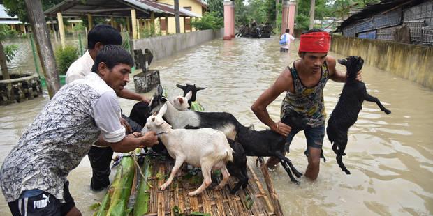 Les pluies de mousson font près de 70 morts en Inde et au Népal - La Libre