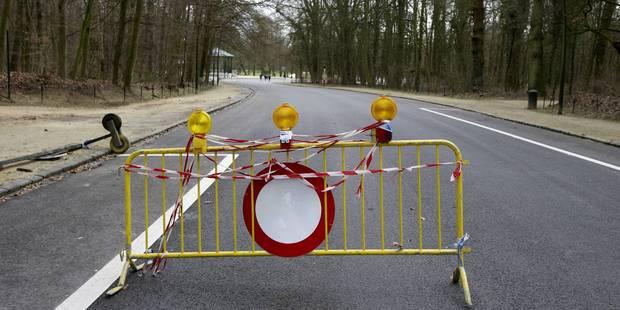 Avis de tempête sur la Belgique: un numéro d'appel spécial activé - La Libre