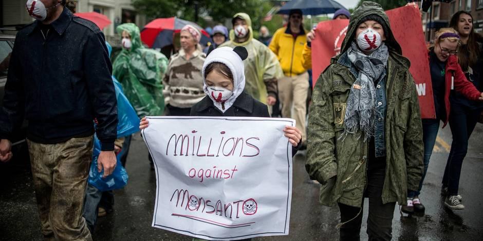 Glyphosate : Monsanto veut accéder à toutes les communications de la plateforme Avaaz