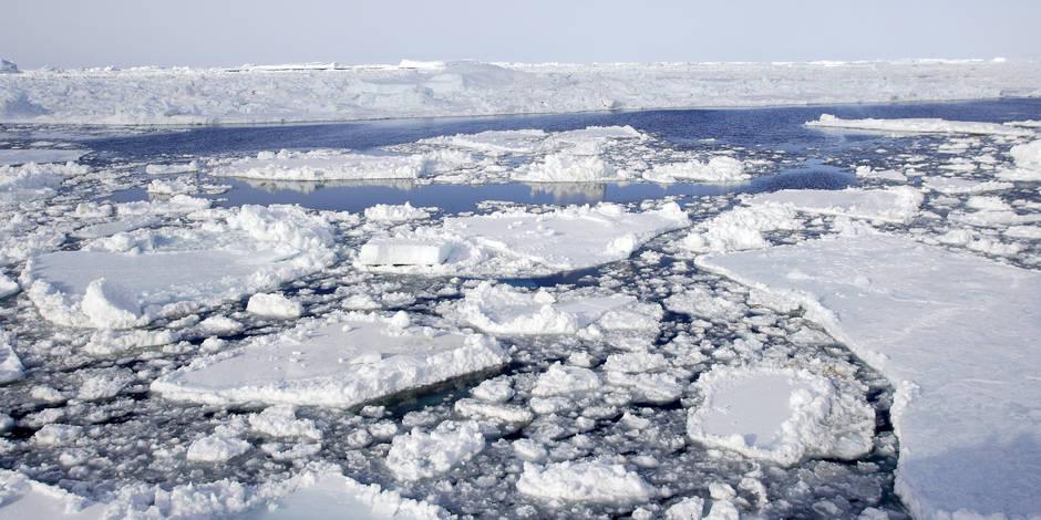 Comment est-il possible qu'il fasse plus chaud au pôle Nord qu'en Belgique? Explications...