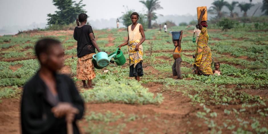 RDC : et pendant ce temps-là, le chaos avance