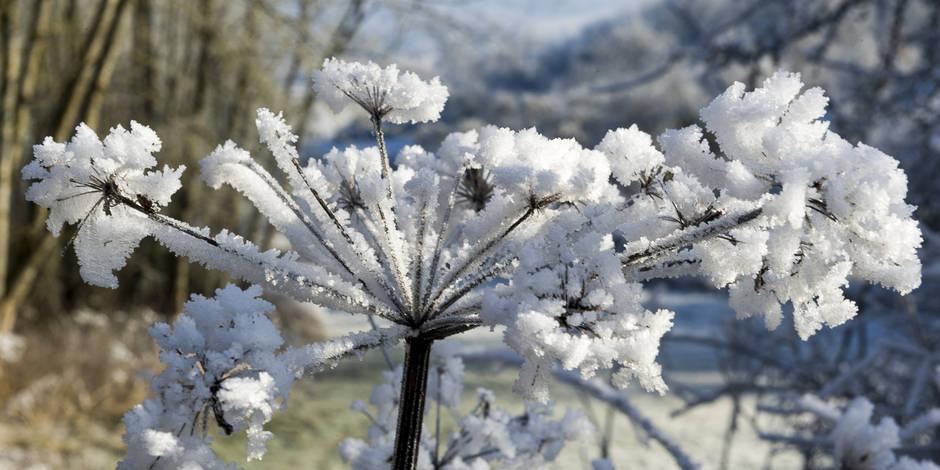 METEO › Ce 18 mars est le plus froid jamais enregistré en Belgique … LA LIBRE BELGIQUE
