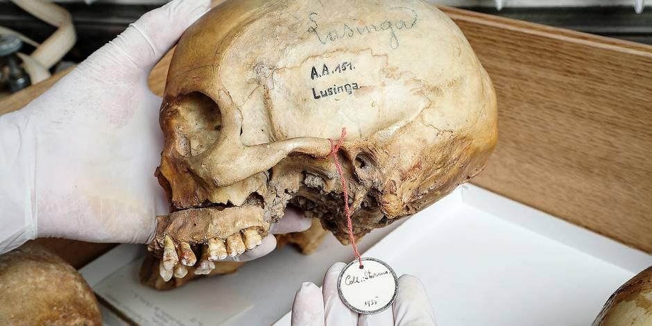 Digne d'un thriller: le crâne d'un chef congolais, tué en 1884, refait surface en Belgique