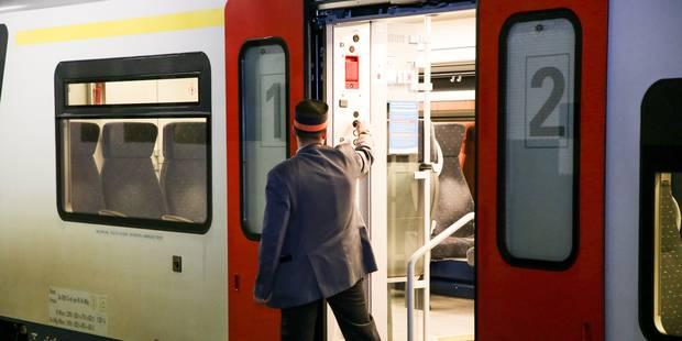 Aucun train ne roulera vers Luxembourg pendant les vacances de Pâques en raison de travaux - La Libre