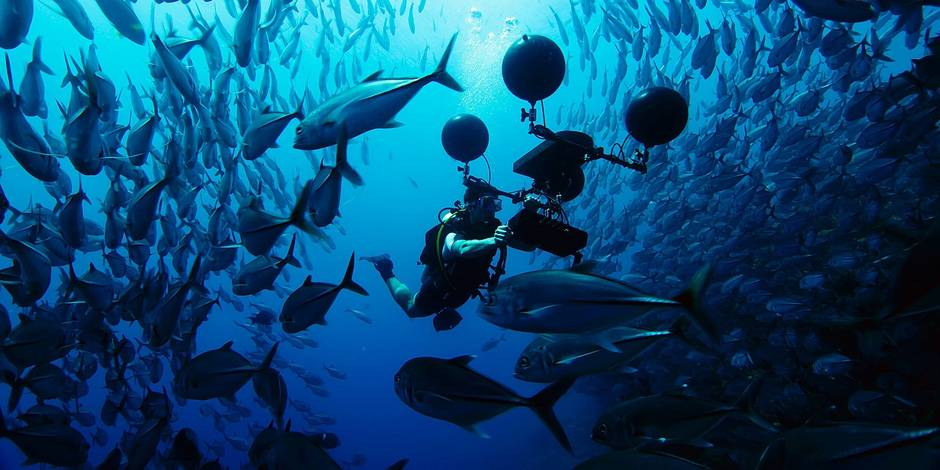 Picture shows: Scientist Steve Simpson uses a multi-directional hydrophone to record the sounds of the coral reef. Scientists have recently discovered that many fish on the reef rely on sound at key stages in their life - and that man-made noise is interfering with this.
