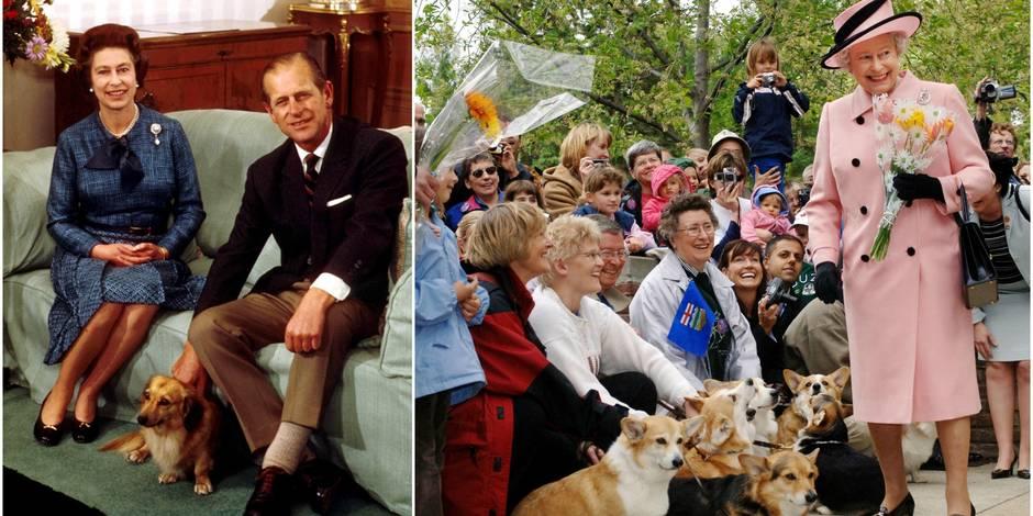 Elizabeth II est dévastée par la mort de son dernier corgi